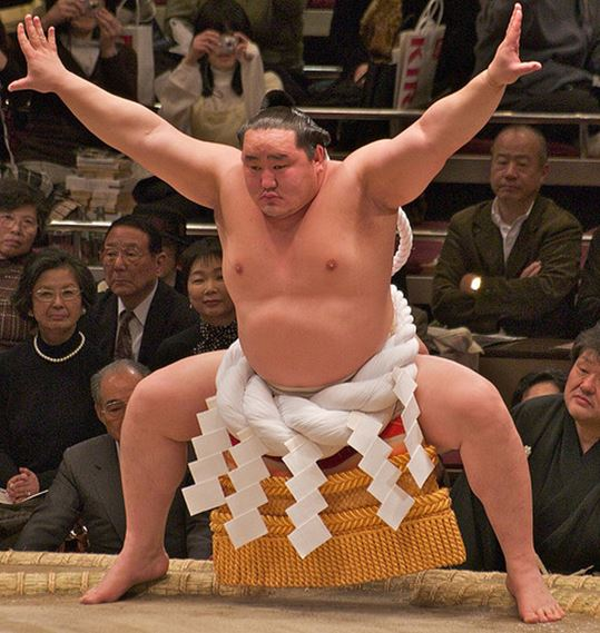 Sumo: Cultural giants of Japan